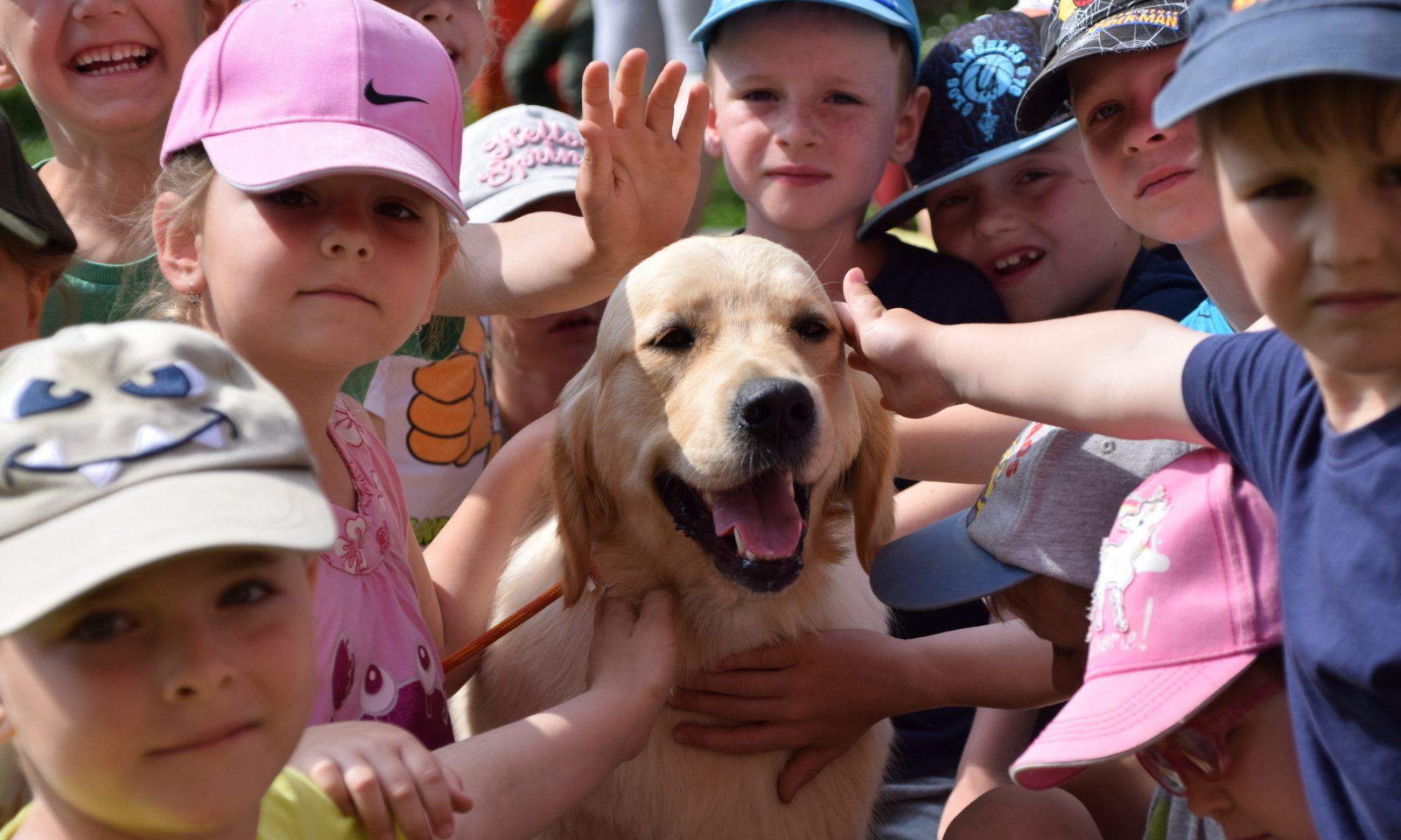 Therapy Dog - caniska.cz